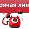 138760153_459514228381786_7555654020347569323_n.jpg