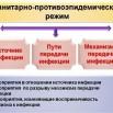 137690519_501031757527430_4838095320179863983_n.jpg